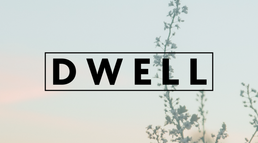 DWELL Shared Values